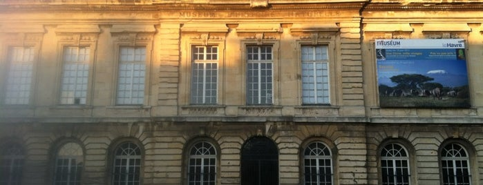 Museum d'Histoire Naturelle is one of Le Havre #4sqCities.