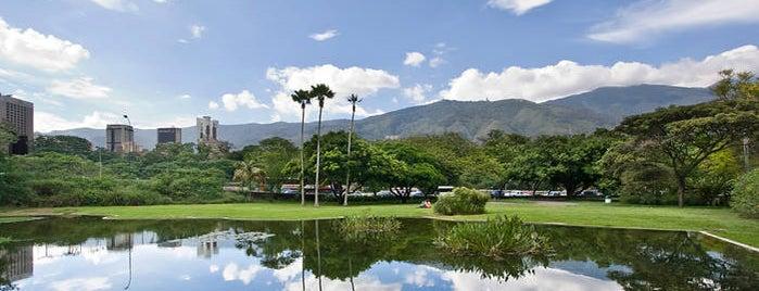 Jardín Botánico de Caracas is one of Plazas, Parques, Zoologicos Y Algo Mas.