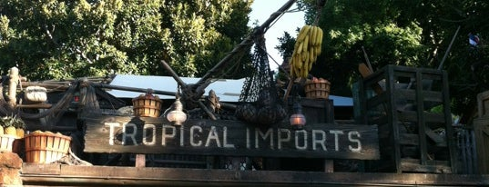 Tropical Imports is one of Disneyland Shops.