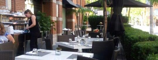 ONE Restaurant/Lounge is one of Toronto, Ontario, Canada.