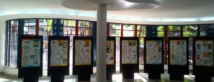 Biblioteca Monteiro Lobato is one of Coisas boas no centro de SP.