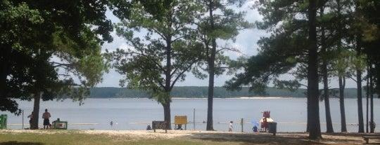 Jordan Lake State Recreation Area is one of North Carolina.