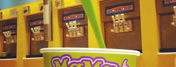 Mama Frozen Yogurt is one of NYC.