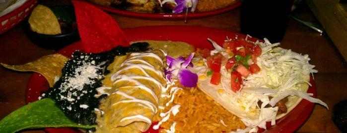 Fred's Mexican Cafe is one of My 100 Favorite Restuarants!.