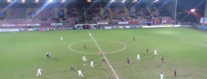 Stade Edmond Machtensstadion is one of Jupiler Pro League and Belgacom League - 2013-2014.