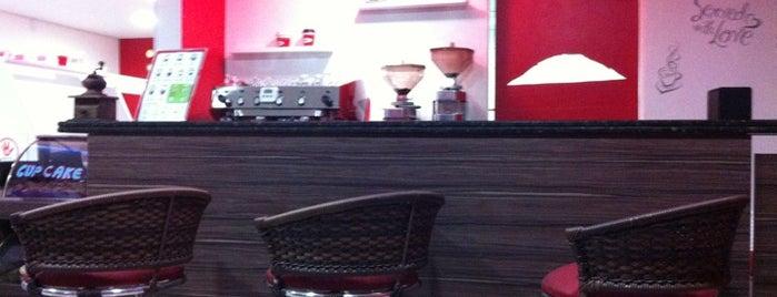 Araraquara for Acqua salon boston