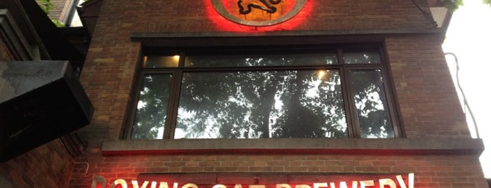 Boxing Cat Brewery   拳击猫餐厅 is one of Craft beer around the world.