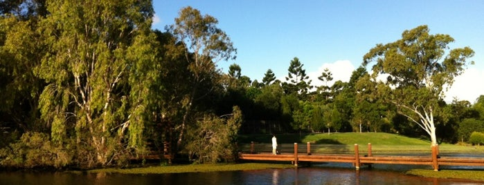 Gold Coast Regional Botanical Gardens (Rosser Park) is one of Gold Coast.