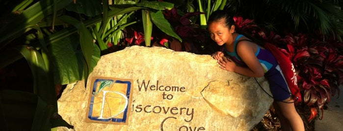Discovery Cove is one of Dicas de Orlando..