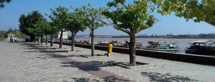 Riverside Phnom Penh is one of เที่ยว Phnom Penh.