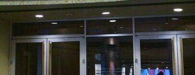 Dolby Theatre is one of Mis lugares más queridos !.