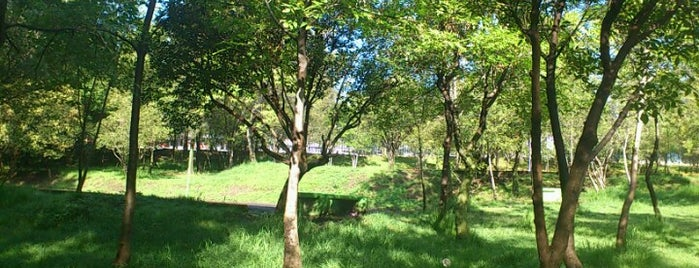 Parque Ecológico Las Águilas is one of Encuentros Urbanos.