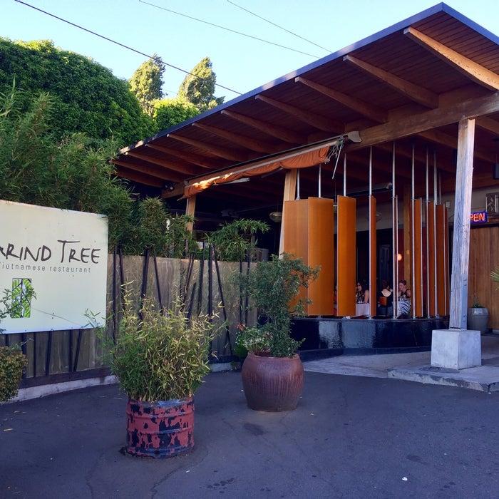Photo of Tamarind Tree