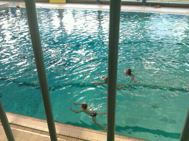 Zwembad De Stok : Zwembad de stok