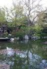 静安公园 | Jing'an...