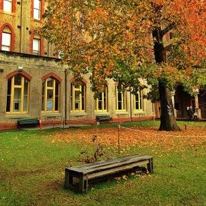 Abbotsford Convent