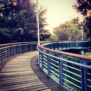 徐家汇公园 | Xujiahui Park