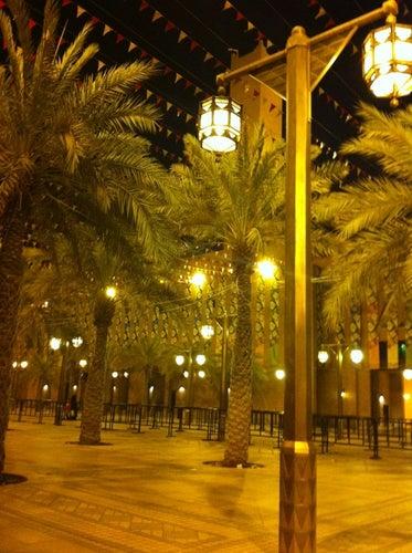 قصر الحكم Government Palace