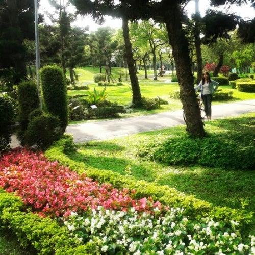 大安森林公園 Daan Forest Park