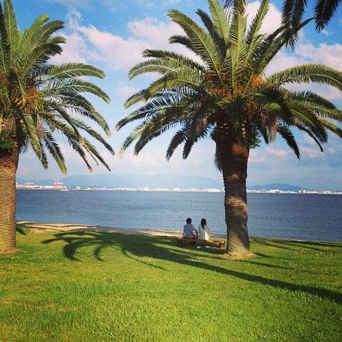 海の中道海浜公園 (Uminonakamichi Seaside Park)