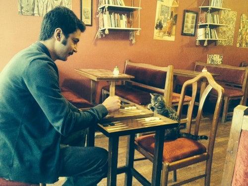 Aralik Kitap Kafe