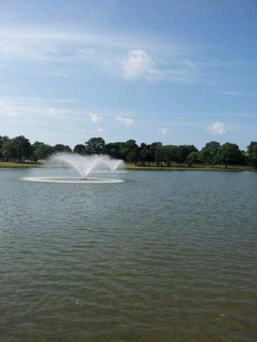 Cobbs Hill Park