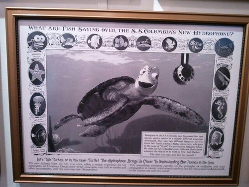 タートル・トーク (Turtle Talk)