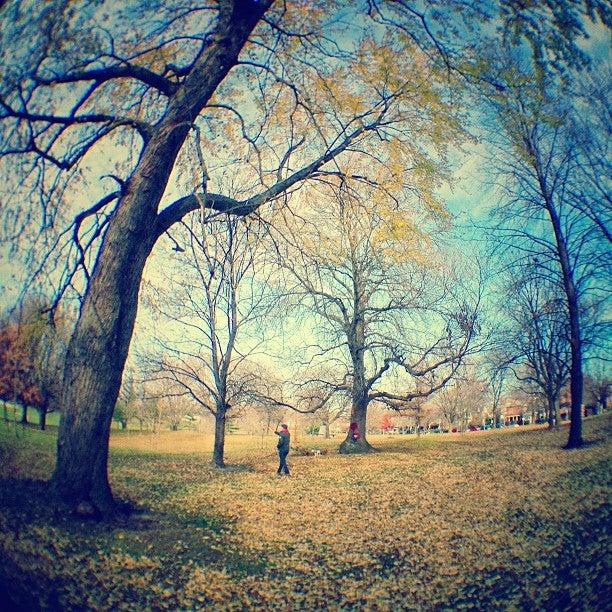 Riverdale Park East