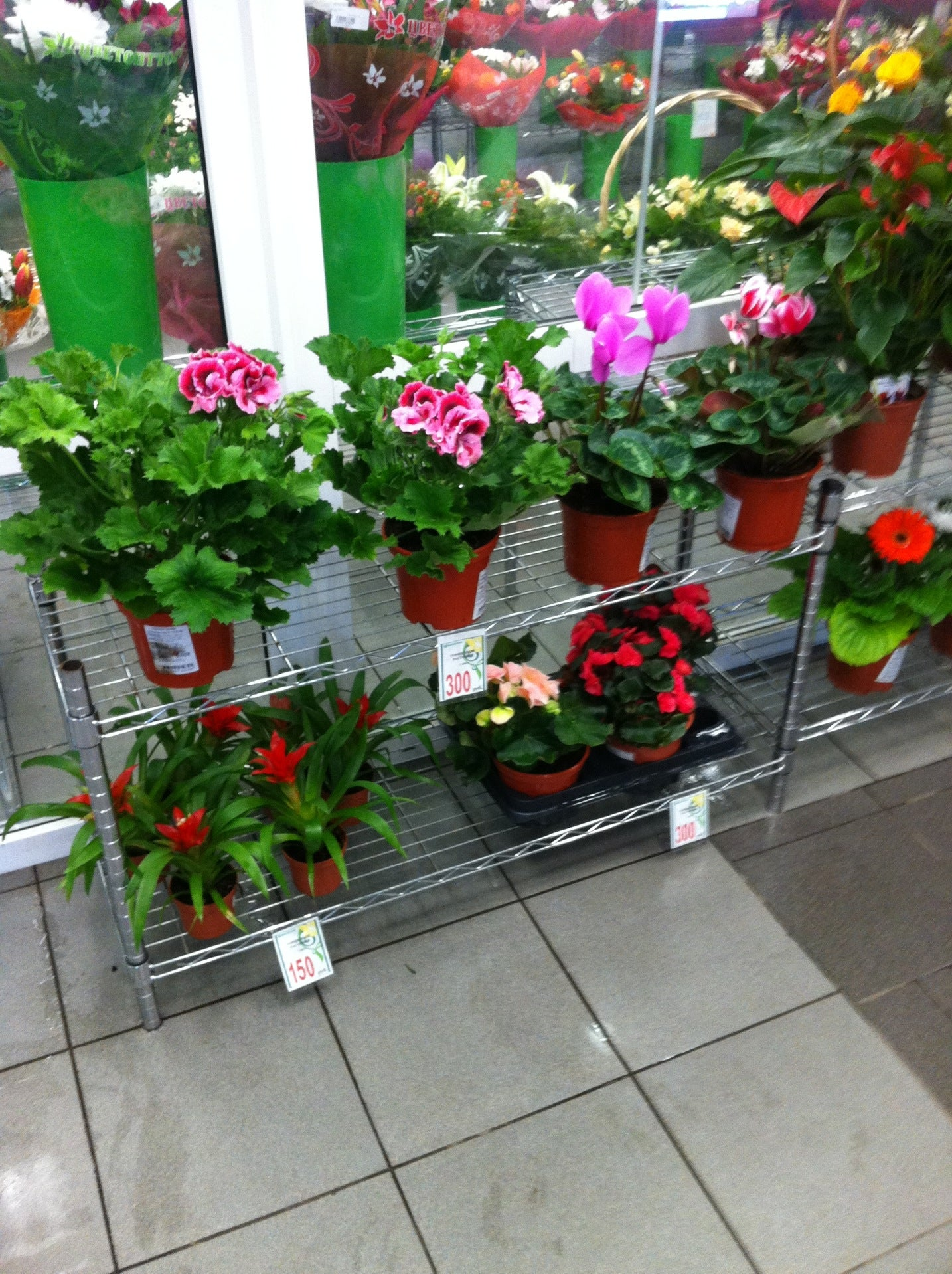 Купить цветы в цветоптторге оригинально обыграть подарок на юбилей