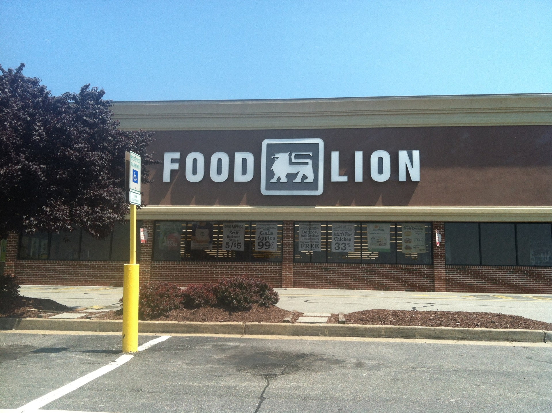 Food Lion Grocery Store,west broad commons