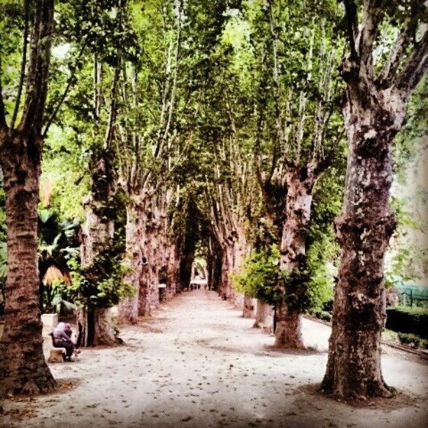 Jardin d'essais d'El Hamma