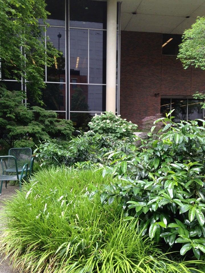 Cincinnati Public Library,garden,library