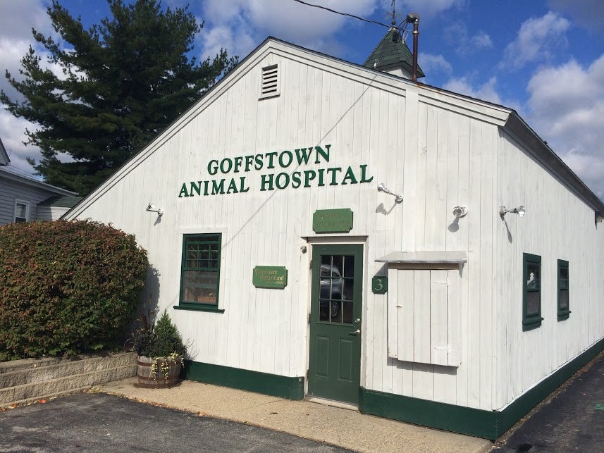 Goffstown Animal Hospital,animal hospital,vet