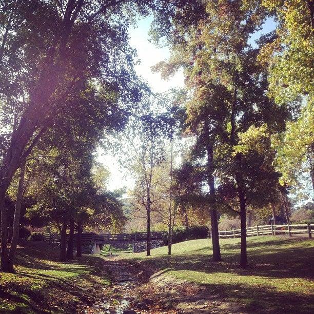 Snow Creek Park