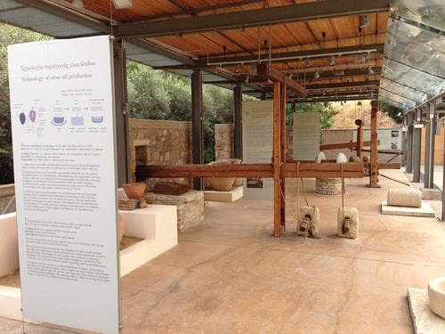 The Olive Tree and Oil Museum