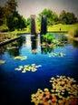 Denver Botanic Gardens_7