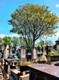 Cimitero del Père-Lachaise_7