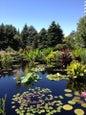 Denver Botanic Gardens_9