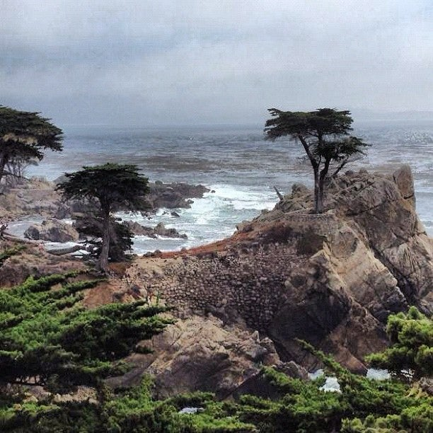 Monterey, Carmel, And 17 Mile Drive