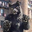 amarok-direwolf-137832053