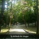 derya-31050770