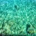 kenan-ozpinar-89847283