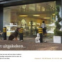 niels-van-den-dries-2913553