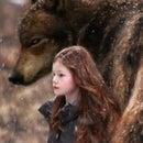 Cessar Feer Wolf