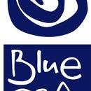 Blue Granate Gallery