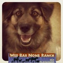 Wee Bar None Ranch