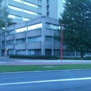 Maerten Stad