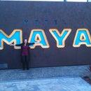 Maya Diamond