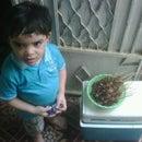 Shafendy Saad