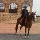 Tareq Fares